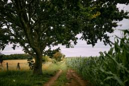 Path through the fields to Sydlings Copse