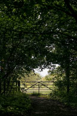Gate at Sydlings Copse